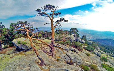 Cinco rutas de senderismo guiado. Cinco tesoros de nuestra sierra