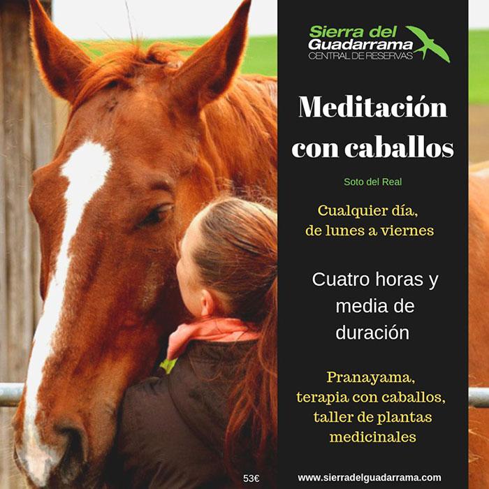 Meditación-con-caballos-SDG