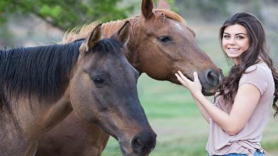 caballos y meditación en Madrid