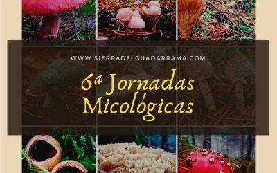 6 Jornadas Micológicas en la Sierra de Madrid
