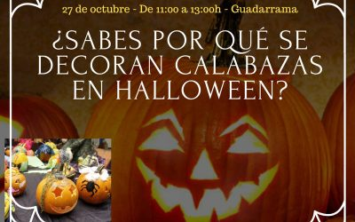 ¿Sabes por qué se decoran calabazas en halloween?