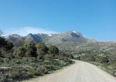 Becerril de la Sierra Ruta Majaelespino
