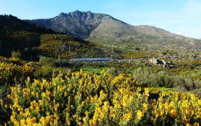 7 experiencias en la Sierra del Guadarrama
