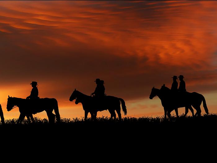 ruta nocturna a caballo en Los Molinos