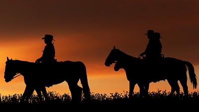 ruta caballos noche