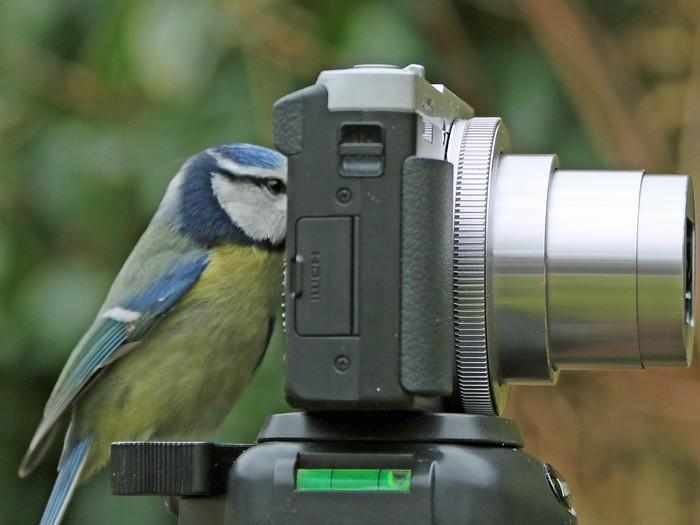 curso retoque fotográfico sierra