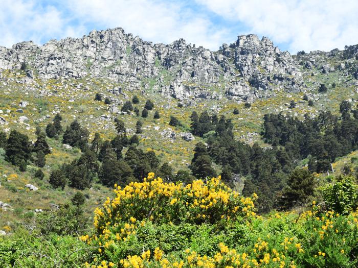 senderismo medioambiental peñota cascadas