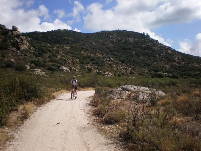 floración del cambroño en bicicleta